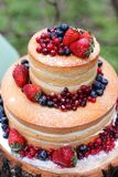 Beautiful cake. With berries Stock Photography