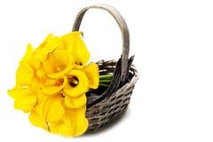 Beautiful calla lilies bouquet Stock Image