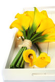 Beautiful calla lilies bouquet Royalty Free Stock Images