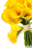 Beautiful Calla Lilly  Bouquet Royalty Free Stock Photo