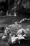 Beautiful calm black and white waterfall landscape at Roughting. Stunning black and white waterfall landscape at Roughting Linn in Northumberland National Park Stock Photography