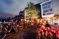 Beautiful calm night view of Amsterdam city. Stock Images