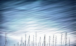 Beautiful calm ripples with sailboats Stock Photo