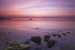 Beautiful and calm sunrise near a beach full with seaweeds. Royalty Free Stock Photo