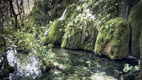 Beautiful Waterfall streaming through the National Park of Plitvice Lakes in Croatia. Beautiful and calm Waterfall streaming through the National Park of royalty free stock images