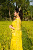 Beautiful Cambodian Asian Bride in Traditional Wedding Dress in a Rice Field Stock Image