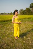 Beautiful Cambodian Asian Bride in Traditional Wedding Dress in a Rice Field Royalty Free Stock Photography