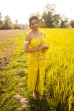Beautiful Cambodian Asian Bride in Traditional Wedding Dress in a Rice Field Stock Photography