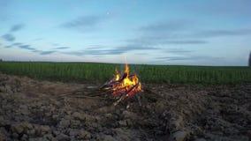 Beautiful campfire bonfire timelapse 4K stock video