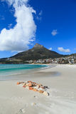 Beautiful Camps Bay Beach and Lion Head Mountain Stock Images