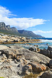 Beautiful Camps Bay Beach and Twelve Apostles Mountain Chain, Ca Royalty Free Stock Photography