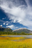 Beautiful Canadian Landscape. Swampy Lake, Rocky Mountains and Cloudy Sky. Photo is taken in Jasper National Park, Alberta, Canada Royalty Free Stock Photography