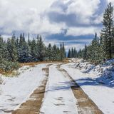 Beautiful Canadian Logging Road In Winter. A Beautiful Canadian Logging Road In Winter royalty free stock image