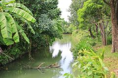Beautiful canal in the nature. Clean and good environment.  royalty free stock photography
