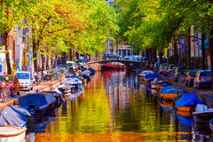 Beautiful canal in the old city of Amsterdam, Netherlands, North Holland province. Royalty Free Stock Photo
