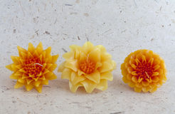 Beautiful candle flower set Royalty Free Stock Photo