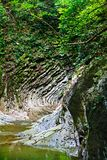 Beautiful canyon in the forest with a flowing streams of mountain creek Royalty Free Stock Photography