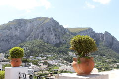 Beautiful Capri Stock Photos