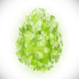Beautiful card Easter egg with green leaves Royalty Free Stock Photography