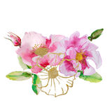 Beautiful card with a floral bouquet of watercolor plants. Royalty Free Stock Photography