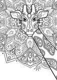 Beautiful card vector. Ornament giraffe vector. Beautiful illustration giraffe for design, print clothing, stickers, tattoos, Adult Coloring book with giraffe Stock Photography