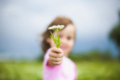 Beautiful carefree girl playing outdoors in field. With high green grass. little child picking up wild flowers Stock Photo