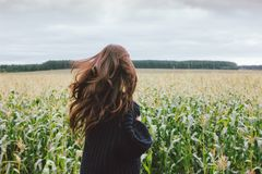 Free Beautiful Carefree Long Hair Asian Girl In Knitted Sweater From Behind In The Autumn Corn Field. Sensitivity To Nature Concept Royalty Free Stock Photography - 157176257