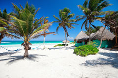 Beautiful Caribbean beach Royalty Free Stock Photo