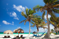 Beautiful Caribbean beach Stock Images