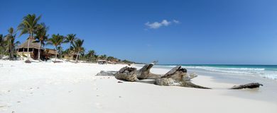 Beautiful Caribbean beach. In Tulum on Yucatan Peninsula, Quintana Roo, Mexico Stock Photography