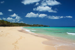 Beautiful caribbean beach Royalty Free Stock Image