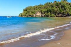 Beautiful Caribbean Beach. With palm coastline Royalty Free Stock Image