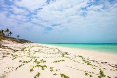Beautiful Caribbean beach Stock Image