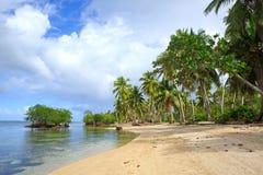 Palm trees on white tropical beach. Stock Photos