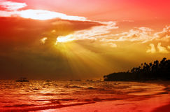 Beautiful Caribbean sunset. Stock Image