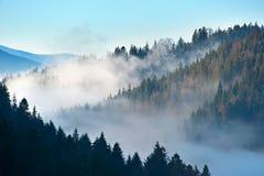 Beautiful Carpathian Mountains Royalty Free Stock Image