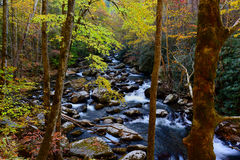 A Beautiful Cascade in the Great Smoky Mountains. An inspiring cascade in the Little Pigeon River flows over moss colored rocks with autumn leaves. Great Smoky Royalty Free Stock Photography