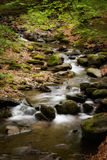 Beautiful cascade in Sudety mountains Royalty Free Stock Photography
