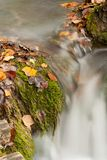 Beautiful cascade waterfall Royalty Free Stock Photography