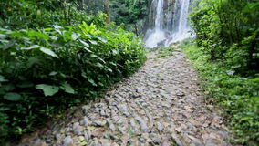 A beautiful cascade waterfall in the cuban jungles near Cumanayagua stock video footage
