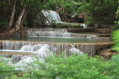 Beautiful cascade waterfall in green forest Stock Image