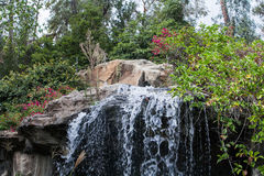 Beautiful cascade waterfall in park. Close up of beautiful cascade waterfall in summer park Royalty Free Stock Photos
