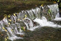 Beautiful cascade Royalty Free Stock Photos
