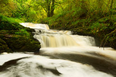 Beautiful cascades of Clare Glens Royalty Free Stock Images