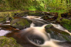 Beautiful cascades of Clare Glens - Ireland. Royalty Free Stock Photography