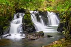 Mountain creek of Clare Glens. Beautiful cascades of Clare Glens in Ireland Stock Images
