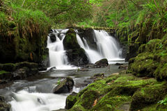Beautiful cascades in Ireland Royalty Free Stock Photography