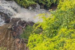 Beautiful cascading Datanla waterfall In the mountain town Dalat. Vietnam Stock Photos