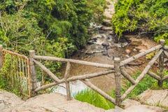 Beautiful cascading Datanla waterfall In the mountain town Dalat, Vietnam.  Royalty Free Stock Photo