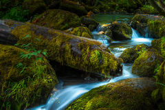 Beautiful Cascading water of Watson Creek Oregon Royalty Free Stock Photo